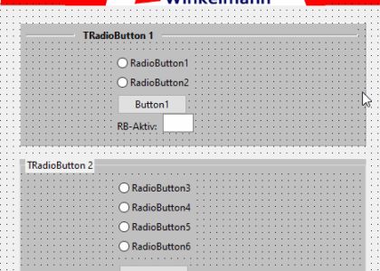 Abb. 1.01 TRadioButton Beispiel Software